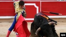 Формальный повод для запрета корриды – забота о быках, которые якобы на арене подвергаются издевательствам