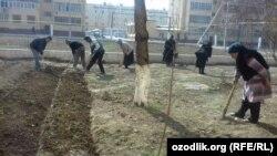 В последние годы учителя в Узбекистане жалуются на то, что слишком перегружены дополнительными заданиями, не связанными с основной работой.