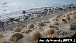 Крымская Сатера: «мертвый» сезон продолжается (фотогалерея)