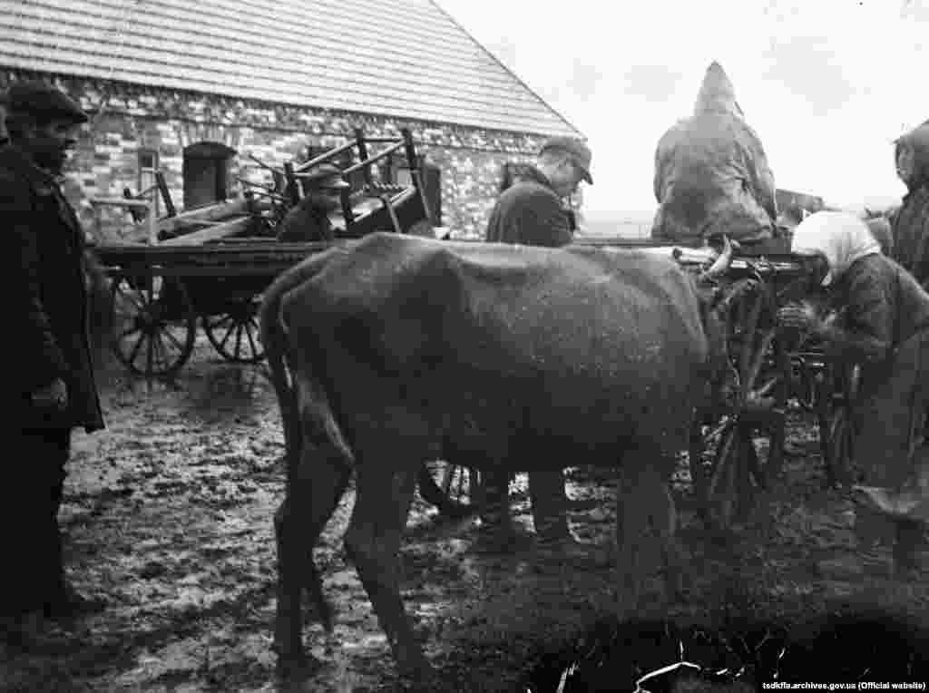 Розкуркулення селянина Ємця П. в одному з сіл Гришинського району Донецької області, 1930–1933 роки