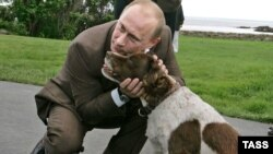 Первый собачник России не смог отказать себе в удовольствии расширить программу саммита. На прогулке с Джорджем Г. Бушем (за спиной) в Уокерс-Пойнте