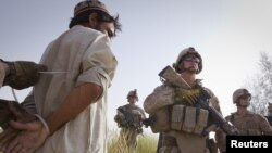 U.S. Marines detain an Afghan suspect during an operation on July 7 in the Garsmir district of Helmand Province, where Western troops are due to hand over security responsibility to local forces.