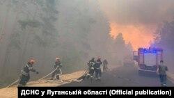 «Це страшна стихія»: найбільш вражаючі фото лісового вогню на Луганщині