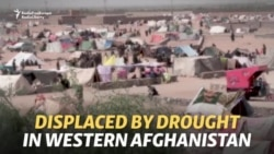 Afghans Flee Villages As Drought Devastates Crops