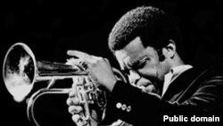 فردی هابرد از استادان مسلم موسيقی جاز بود که در سال ۱۹۷۲ برای آلبوم «اولين چراغ»، موفق شد جايزه بهترين اجرای موسيقی جاز جوايز «گرمی» را از آن خود کند.