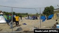 Migranti na granici kod Horgoša