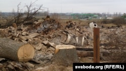 На месте снесенных домов в деревне Павловичи.
