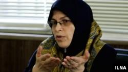 آذر منصوری، عضو شورای مرکزی حزب اتحاد ملت