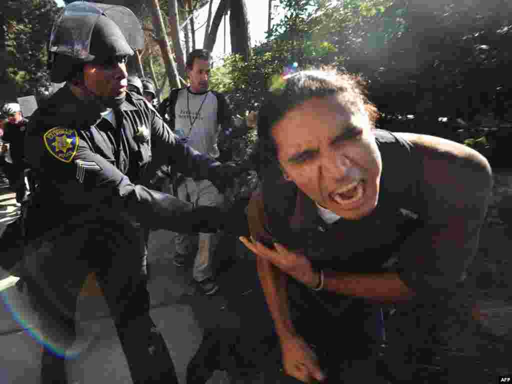 Полиция арестовала более 50 студентов Калифорнийского университета, протестующих против 32% повышения платы за обучение