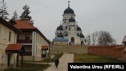 Vedere a Mânăstirii Căpriana
