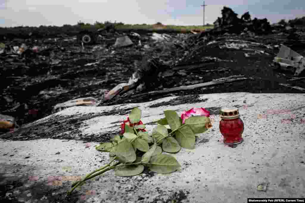Квіти і свічки поблизу уламків на місці катастрофи малайзійського боїнга, недалеко від села Грабове 19 червня 2015 року