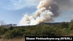 ДСНС попереджає про високу пожежну небезпеку