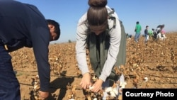 The government in Tashkent uses one of the world's largest state-sponsored systems of forced labor to harvest Uzbek cotton.