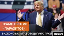 دونالد ترمپ رئیس جمهوری امریکا
