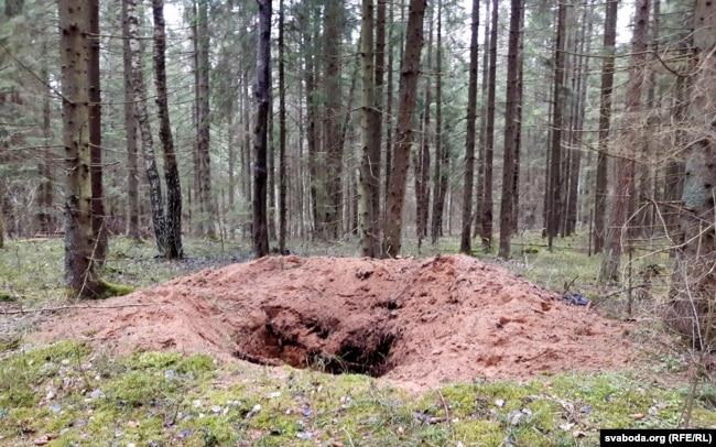 Вялікі раскоп у лесе. Такіх Юрый Садкоў налічыў каля сямі