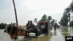 Some 20 million Pakistanis have been affected by the flooding.