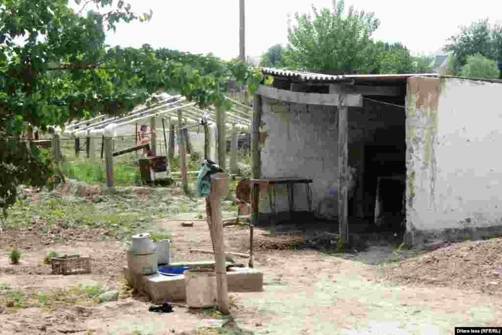 Личное подворье переехавшего из Арнасая жителя села Кызылкум.