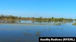 Cavadxanlı kəndində göl