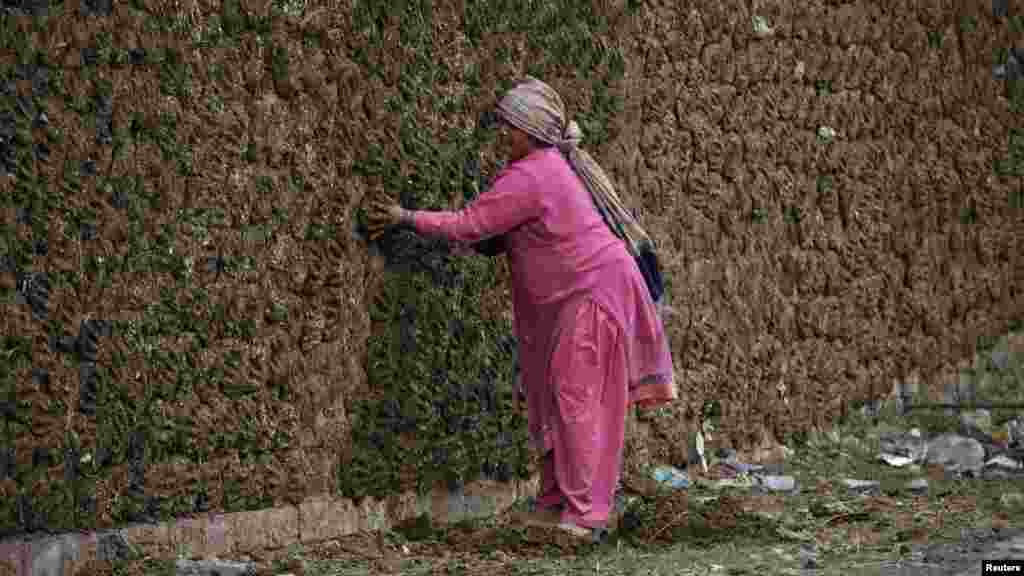 A woman pastes cow dung cakes on a wall on the outskirts of Lahore, Pakistan. The dung is used as cooking fuel. (REUTERS/Mohsin Raza)