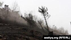 Последствия пожара в Иле-Алатауском национальном парке. Алматинская область, 7 сентября 2012 года. Иллюстративное фото.