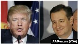 تد کروز و دونالد ترامپ