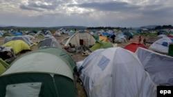 Migrantët në kufirin Greqi-Maqedoni