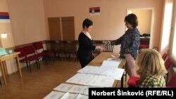 Najviše lista učestvovalo je na izborima za Nacionalni savet Rusina