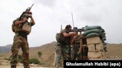 آرشیف، عملیات نیروهای امنیتی افغانستان در ولایت شرقی ننگرهار