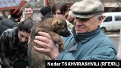 Согласно законодательной инициативе, размножение домашних животных должно быть ограничено