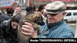 Питомцев Всегрузинского общества защиты животных тоже можно назвать счастливчиками. В убежище 49 собак