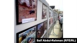 Көлік апаттары туралы көрме. Ирак, 7 мамыр, 2012 жыл