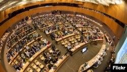 په سویډن کې د جنیوا کنفرانس. مې ۳۱، ۲۰۱۱(انځور له ارشیفه)
