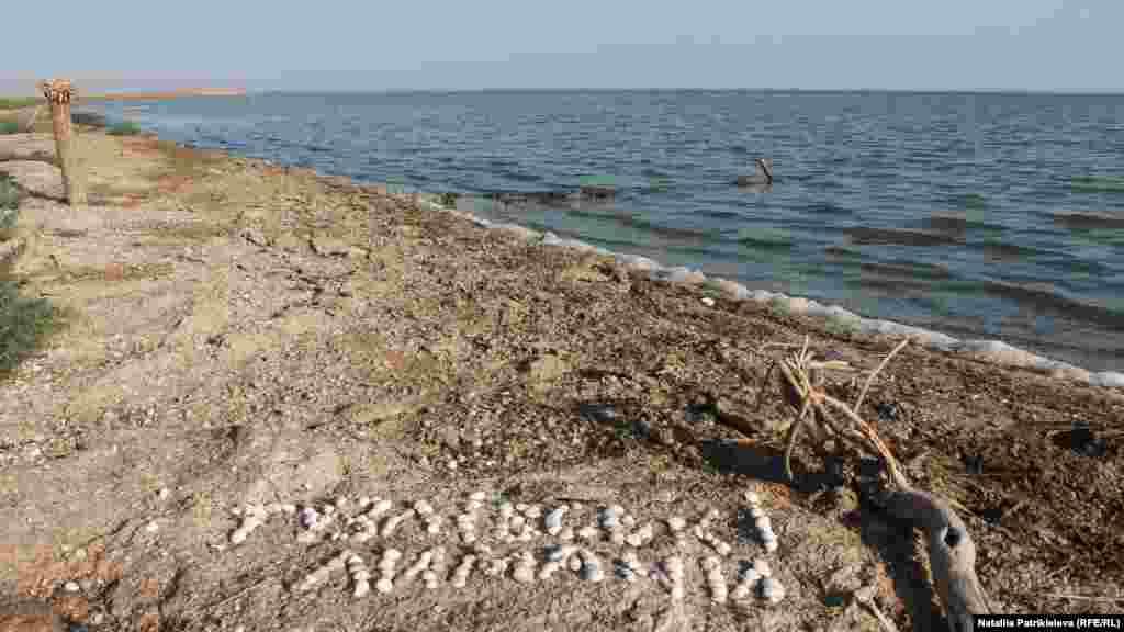 Граница– это деревянный дом между лиманами Шаганы и Малый Сасык, рядом с морским побережьем. Часть помещения профинансировало Министерство экологии и природных ресурсов Украины. Остальное– волонтеры. Отсюда начинается маршрут «Тузловская Амазония»