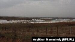 Теплицы вдоль автомобильной дороги из Сарыагаша в села Жартытобинского сельского округа. 11 февраля 2015 года.