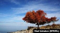 Осень на Иссык-Куле. Иллюстративное фото.