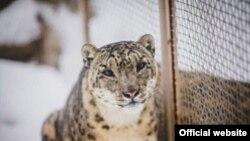 Фото с сайта Казанского зооботсада