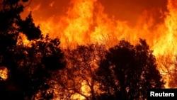 Pamje nga zjarri në rajonin San Bernardino në Kaliforni