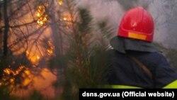 ДСНСники гасять пожежу, яка з трави перекинулася на дерева, 8 квітня 2020 року