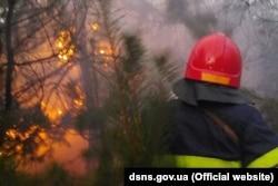 Минулорічні пожежі на Луганщині знищили майже 30 тисяч гектарів лісу