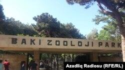 Bakı zooparkının gələn il 75 yaşı tamam olacaq, 19.06.2016