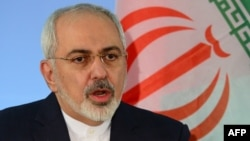 Iranian Foreign Minister Mohammad Javad Zarif speaks during a press conference with his German counterpart in Berlin on January 15.