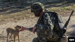 Украинский военнослужащий рядом с Горловкой (городом на востоке Украины).