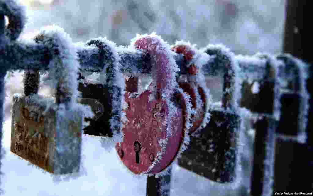 Locks hang covered with frost on a winter's day at a park in Minsk. (Reuters/Vasily Fedosenko)