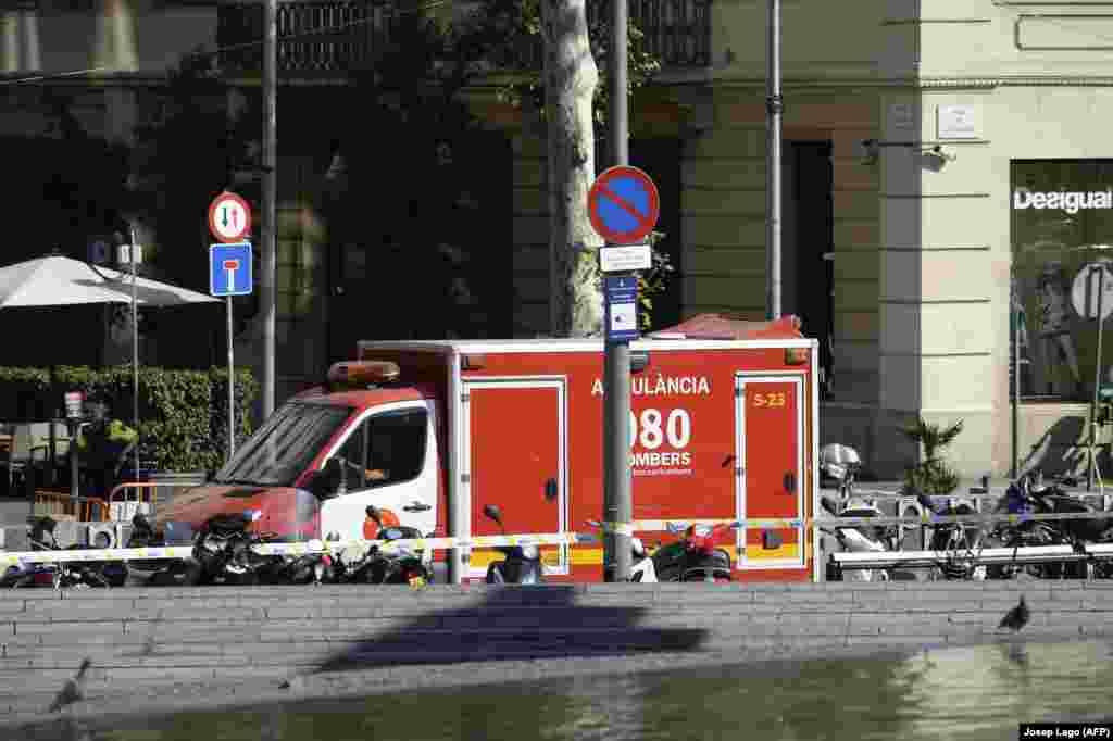 Спустя несколько часов после этой атаки полиция сообщила об уничтожении пяти предполагаемых террористов, подозреваемых в подготовке аналогичной атаки в городе Камбрильс к югу от Барселоны.