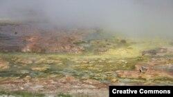 Цветные архебактерии обитают в горячем гейзере