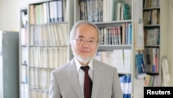 Жапон окумуштуусу Иошинори Осуми.