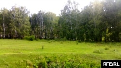 Күнтимес қонысы. Қостанай облысы, шілде, 2009 жыл.