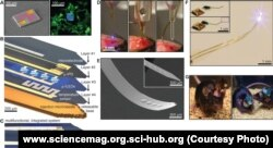 """Engineers from the U.S. and Korea presented (http://www.sciencemag.org/content/340/6129/211) in the journal Science, they have developed flat """"needle"""", which are mounted on the surface of tiny LEDs and sensors"""