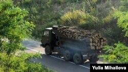 По словам министра охраны окружающей среды, существующая модель выдачи и получения лицензии способствует защите лесного массива от незаконной вырубки и никаких предпосылок к пересмотру этой модели нет
