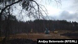 Вместо леса теперь стройка